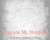 Upgraded Shipping Option - Priority Express Mail 5-7 Business Day Delivery