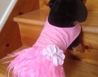 Ballerina Dress by FiercePetFashion