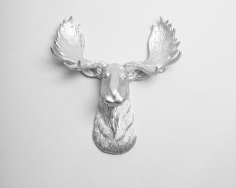 White Moose Head The Edmonton Moose By Whitefauxtaxidermy
