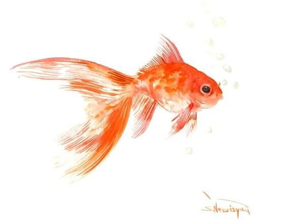 Pesci rossi acquerello originale dipinto 12 x 9 in pesci for Pesci rossi acquario