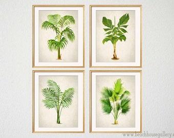 Genial Palm Print Set Of 4, Botanical Prints, Palm Tree Wall Art, Tropical Decor