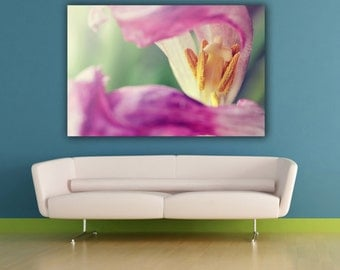 Pink Tulip Flower Photography, Spring Flower Photograph, Pink Tulip Close Up Botanical Horizontal Wall Art, Fine Art Nature Photo Print