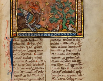 """Bestiary Illumination : """"A Dragon Charging Two Doves"""" (c1270) - Giclee Fine Art Print"""