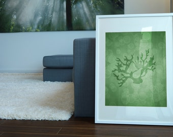 Coral Art, Coral Print, Nautical Print 8 X 10, Bathroom Decor, Beach House Decor, Artwork and Illustration Gift, Home Wall Art