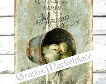 Baby Chicks Birds Nest Large Image Instant Download Vintage Transfer Fabric digital collage sheet printable No. 087