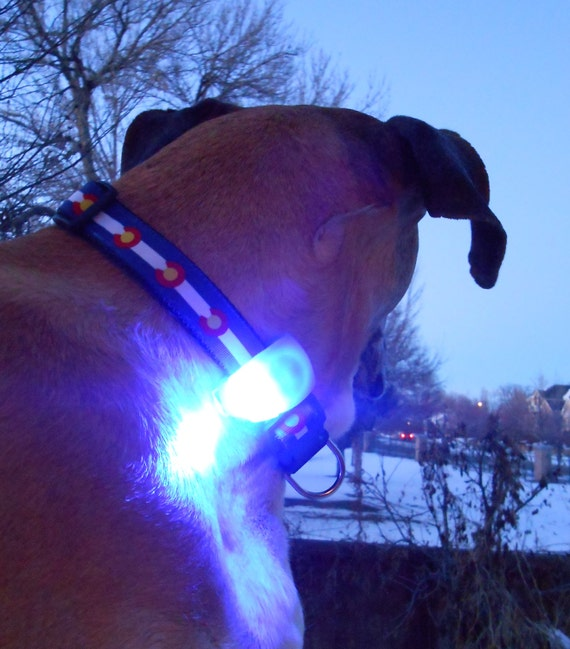 Dog Collar Harness Amp Leash Lights Clip On Flashing Pet By