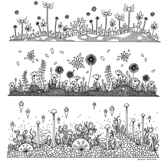 pond ecosystem coloring pages | Garden Ecosystem Coloring Page