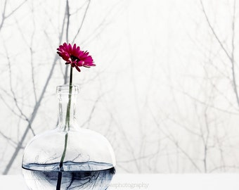 Gerbera daisy photography, pink flower print, floral print, minimal, still life flower and vase fine art print, white wall decor, home decor