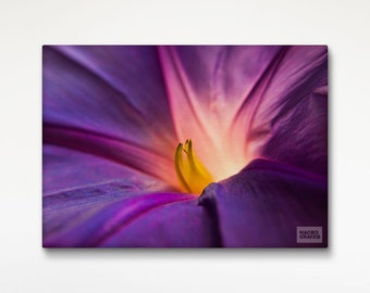 Purple Macro Flower Canvas Print, Room Wall Art, Macro Photography, Floral Decor