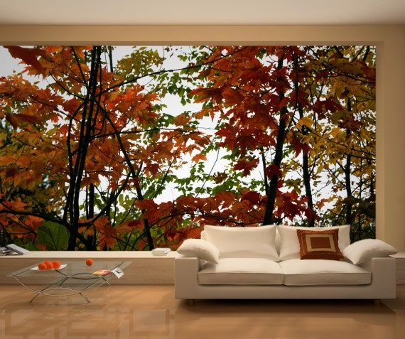 Autumn Photo Wall Art - Wall Mural - Repositionable Adhesive Fabric - Self-Adhesive Wall Covering - Peel & Stick Wall Skins - SKU: OUTNMural