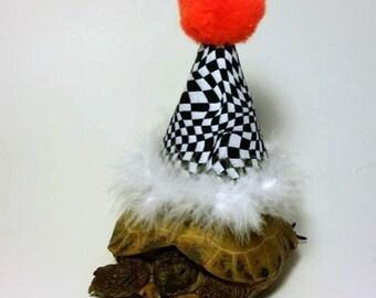 Tortoise Hat, Party Hat, Birthday Hat, Pet Costume, Tortoise Costume, Birthday Hat, Turtle Costume