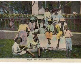 vintage African-American Sugar Cane Grinders postcard