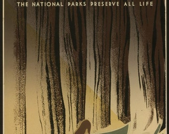 Wild Life poster National Parks Service poster 1940 reproduction