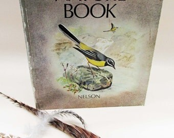 Vintage Natural History Book - My First Nature Book - Nelson 1967