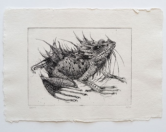 frog - original handpulled etching - black and white - dragon - illustration