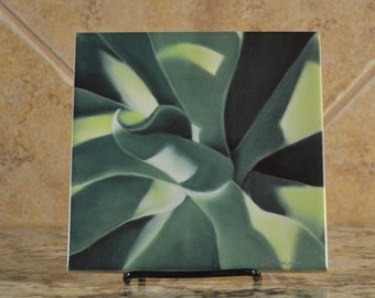 Ceramic Trivet - Aloe Plant from a pastel painting by JoAnne Tucker  done in Costa Rica - Limited Edition