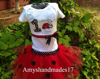 Lady bug themed first birthday set