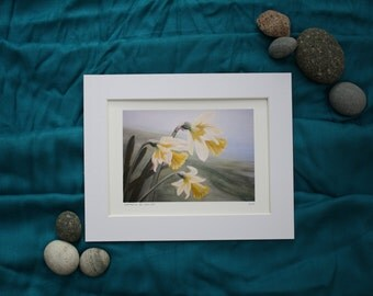 Daffodil print from original acrylic painting