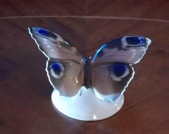 Rosenthal of Germany Moth