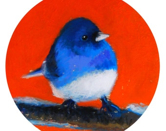 """Chubbylicious Blue and Orange Bird. 5""""1/4 Diameter - Original Pastel on Paper Painting. Art, colorful, cute, gift idea, home, decoration"""