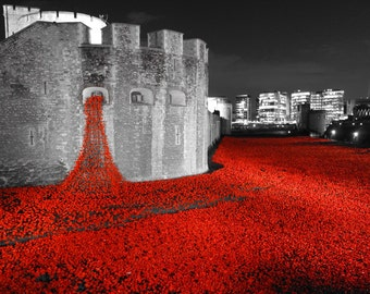 Tower of London Poppies installation 2014 Limited edition print