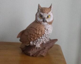 Lg. Owl on Log