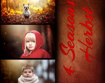 Photoshop set fall / autumn - 4 seasons