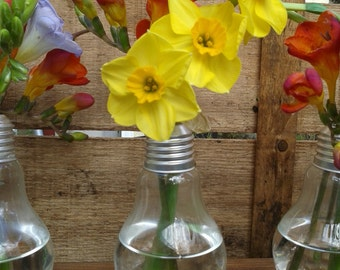 Vases made from a light bulbs on a wooden base, this one is for three lightbulbs.