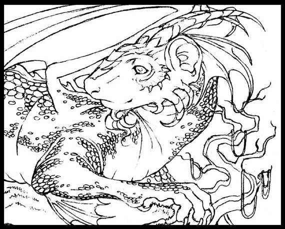 items similar to dragon ferret printable coloring page