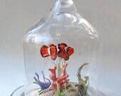 Custom Order Reserved ThePossumTree Aquarium Ocean Fish Lampwork Glass Handmade Cloche Dome Globe by Studio Marcy