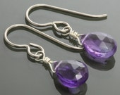 Little Amethyst Earrings. Titanium Ear Wires. Genuine Gemstone. February Birthstone. Lightweight Earrings. s15e082