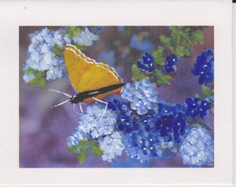 Hand Painted Butterfly and Flowers Card Set