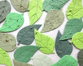 50 Plantable Seed Paper Leaves Unique Wedding Favors - Plantable Pots and Personalized Wedding Cards Option - Green Leaves or Rustic Fall