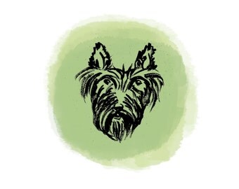 Scottish Terrier Print