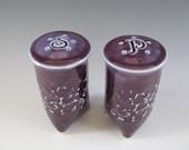 Handmade Textured Salt and Pepper Shakers in Purple