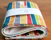 Organic Burp Cloths, Set of Two in FLIGHT STRIPE; Rainbow Stripes and Birds Baby Burp Cloths Gift Set by Organic Quilt Company