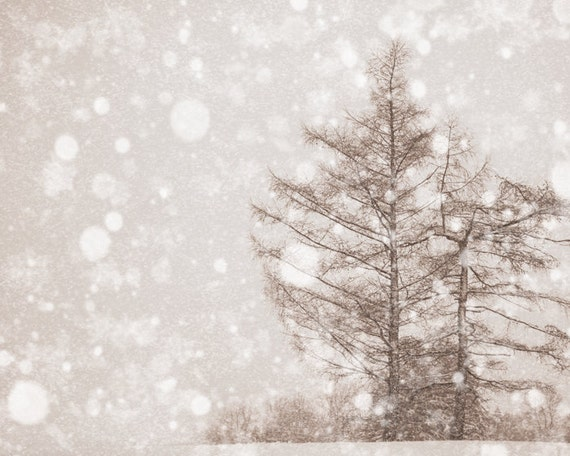 Snow photography, winter landscape, snow wonderland, Montreal winter, winter photography, rustic, cottage chic, neutral, sepia, snowflakes,