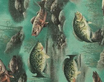 Here Fishy Fishy   Pillowcase