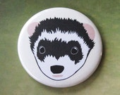 Sable Ferret Face - Pinback Button or Magnet