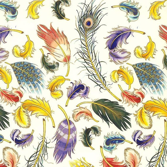 Italy Authentic Florentine Paper With Feather Pattern By Rossi IP R148