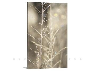Gold Art, Minimalist Nature Photography, Vertical Art, Photography Print, Elegant Art, Canvas Art, Bokeh, Giclee Canvas, Wetlands, Arivaca