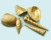 Set of Six Decorative Gold Sea Shells for Bathroom, Home