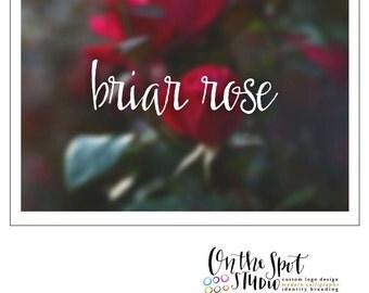Briar Rose Hand Drawn Font by OTSS