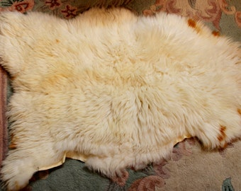 White Sheep Pelt, Navajo Churro Washable Lamb skin Pelt, Rug # 510