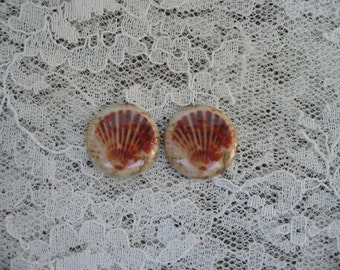 Beautiful Seashell Cabochons Beachy Sea Shell Cameos Cabochons Unset Pair of 18mm