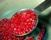 Japanese Matsuno 6/0 Translucent Siam Red Rainbow Lined Seed beads
