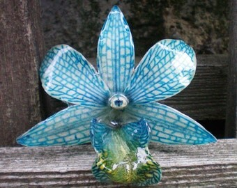 REAL Natural Bold Shades of Teal Blue and Green ORCHID Pin and Pendant
