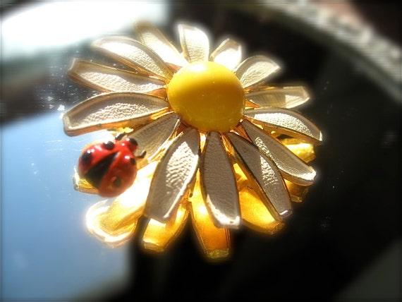Bug on a daisy Weiss Lady Bug on a Daisy