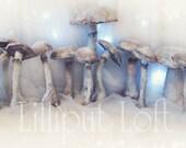 Mushrooms papier maché