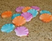 Tropical  Seashell hand Decorated Sugar Cookies - 1 dozen